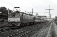 19820334