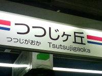20100309a