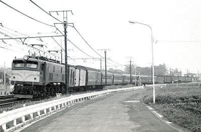 198008x013