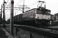 1980082036