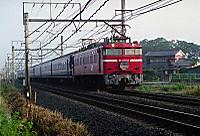 200106008