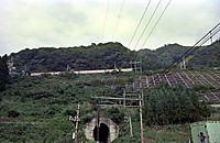198009172009