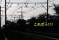 1986ef55