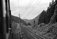 19800725d042