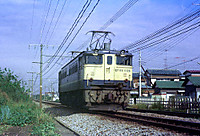 1978aut001