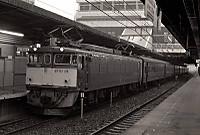 1982080038