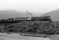 198009183018